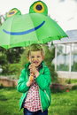 Adorable toddler boy with green frog umbrella Royalty Free Stock Photo