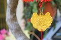 Adornment for chinese lunar new year Stock Images