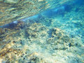 Adriatic sea bottom clean transparent blue in croatia Royalty Free Stock Photography