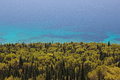 Adriatic sea with pine and cypress forest view from top onto in croatia Royalty Free Stock Photos