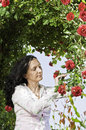 Adult beautiful woman picking roses in garden Royalty Free Stock Images