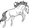 Adult coloring page horse.