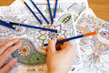 Adult Colouring Books With  Pe...