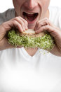Adult eating a sandwich full of alfalfa sprouts young healthy lifestyle concept Royalty Free Stock Photo
