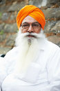 Adult indian sikh man Royalty Free Stock Photo