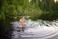 Adult man splash water in forest lake Royalty Free Stock Photo