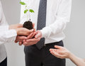 Adult people holding a green sprout and child's hand reaching ou Royalty Free Stock Photo