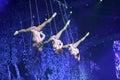 Adventure swing acrobatics Royalty Free Stock Photo