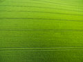 Aerial image of a lush green filed