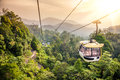 Aerial tramway moving up in tropical jungle mountains Stock Photo