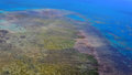 Aerial view of arlington coral reef at the Great Barrier Reef Qu Royalty Free Stock Photo