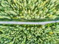 Aerial view of a country road in the forest. Beautiful landscape. Clouds over the green forest and road. Aerial bird`s eye road. A Royalty Free Stock Photo