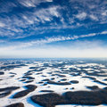 Aerial view of groves which are on swamp during bright winter day Royalty Free Stock Image