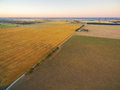 Aerial view of harvested agricultural field and pastures at suns Royalty Free Stock Photo