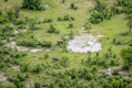 Aerial view of a herd of Elephants. Royalty Free Stock Photo