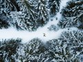 Aerial view of the lying man in winter forest Royalty Free Stock Photo
