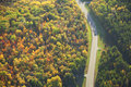 Aerial view of road curving through woods in fall color Royalty Free Stock Photo