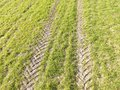 Aerial view of tractor tracks in a crop field. Royalty Free Stock Photo