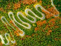 Aerial view of winding road through autumn colored forest Royalty Free Stock Photo