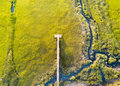 Aerial view of wooden bridge over a swamp Royalty Free Stock Photo
