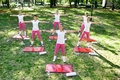 Aerobics class outdoor group of six women having Royalty Free Stock Photography