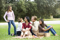 Affectionate modern multicultural family on picnic Royalty Free Stock Photos