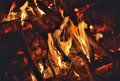 Aflame wood a close up of the in bonfire Royalty Free Stock Image