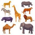 Africa Animal Decorative Set