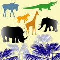Africa animals. Stock Images