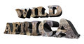 Africa background wild d with wildlife Stock Image