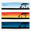 Africa banners vector illustration of Stock Photography