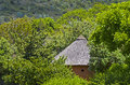 Africa hidden round hut with thatched roof south Stock Images