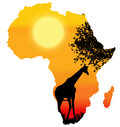 Africa safari silhouette shape of with a sunset scene Stock Photography