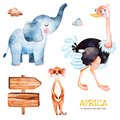 Safari collection with ostrich, elephant, meercat, wooden sign, stones.