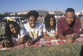 An African-American family picnicing Stock Image