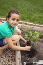 African american girl planting a new plant cute young green pepper in her family garden Royalty Free Stock Photo