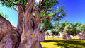 African baobabs Royalty Free Stock Images