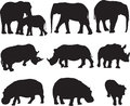 African elephant,white rhinoceros and hippo silhouette contour