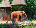 African elephants at zoo the in thailand Stock Photo