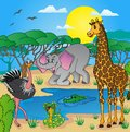 African landscape with animals vector illustration Royalty Free Stock Photo