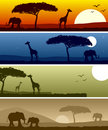 African Landscape Banners