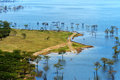 African landscape, bird's-eye view on lake Nakuru Royalty Free Stock Photo