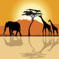 African landscape with giraffes and elephant. Stock Photo