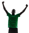 African man soccer player celebrating victory silhouette one green jersey in on white background Stock Photos