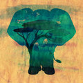 African Night with Elephant Grunge