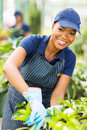 African nursery worker gardening happy young american Stock Photography
