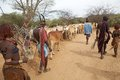 African people and cattle