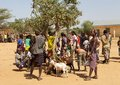 African people at the market of hamer ethnic grouop arte selling goats turmi ethiopia Royalty Free Stock Images