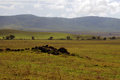 African plains a photograph of the in the ngorongoro crater tanzania Stock Photography