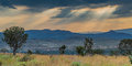 African plains view over the wide south savannah under a dramatic sky Royalty Free Stock Photo